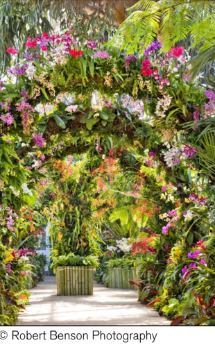 The New York Botanical Garden: The Orchid Show: Singapore