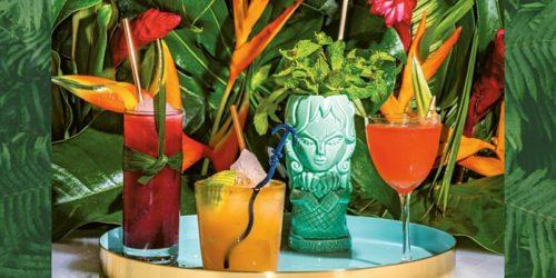 Escape to the Tropics - TIKI Cocktail Webinar!