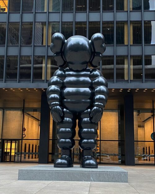 KAWS: WHAT PARTY?