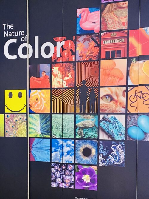 The Nature of Color @AMHN